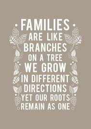 Quote About Family 40 Photos Weeklytravelspecials Quotes Fascinating Best Cousins Quote
