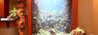 Image result for cost of professional aquarium builders