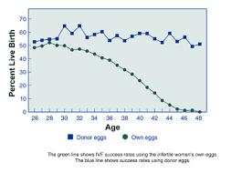 Evaluation Of Ovarian Function Denver Co Evaluation Of
