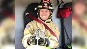 Firefighters in Yavapai County rescue injured owl | Arizona News ...