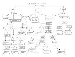 Biochemical Test Chart Identification Unknown Bacterial Identification Chart Www