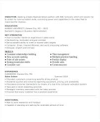 resume templates entry level entry level resume template business analyst it resume template