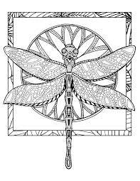 Small Picture 133 best Dragonfly images on Pinterest Dragonfly tattoo Draw