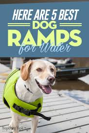 the best dog ramps for water