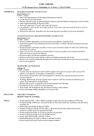 Example Of Accountant Resumes Inventory Accountant Resume Samples Velvet Jobs
