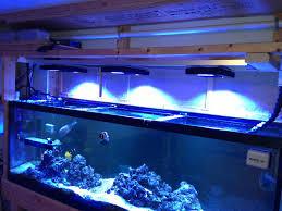agreeable reef aquarium led lighting guide