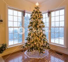 Christmas Tree Through The Window  Greg Okolita  FlickrChristmas Tree In Window
