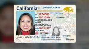 Government By Now California's Real Requirements Id Accepted