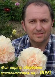 Александр Жуков   ВКонтакте
