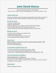 Professional Profile Resume Examples Inspirational Resume Profile