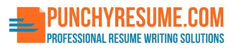 executive resume writing services executive resume samples free resume examples punchy resume