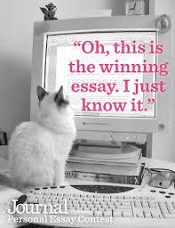 cat essay writer com