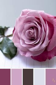 Zj Colour Palette 429 Colourpalette Colourinspiration