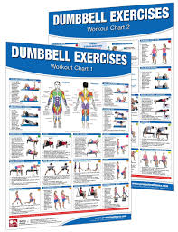 Dumbbell Workout Chart Dumbbell Workout Poster Chart Set Shoulder Training