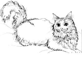 Cat Coloring Pages Printable Free For Kids 1050764 Attachment