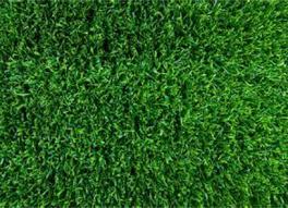 fake grass texture. Astro Turf Artificial Grass Fake Texture T