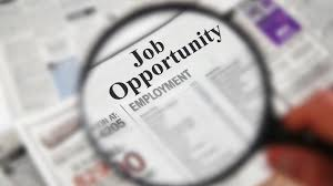 job seeking tips from someone who s been there i became an expert at finding jobs because practice makes perfect