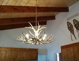 small med chandeliers antler chandelier for brilliant property small antler chandelier prepare