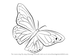 drawing butterfly pictures.  Drawing How To Draw A Monarch Butterfly In Drawing Pictures S