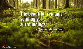 Beautiful Surroundings Quotes Best of Explore Malcolm De Chazal Quotes QuoteCites