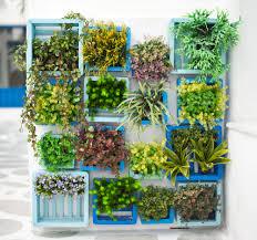 Butterfly Container Garden Uk Container Gardening Pinterest Inside Container Garden Ideas Uk