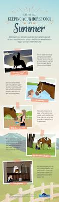 Beat the Heat - Keeping Your Horse Cool This Summer | Visual.ly