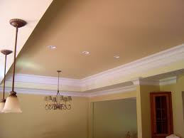 Interior:Different Ceiling Types Engaging Impressive Ceilings Different  Types Of Home Photos Ceiling Paint Design