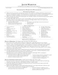 Executive Resume Writing Executive Cv Template And Writing Guidelines Livecareer
