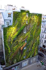 Small Picture Vertical Garden Design Home Ideas Decor Gallery