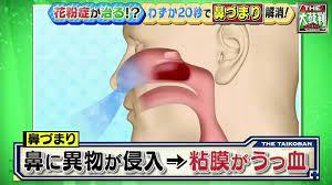 鼻 詰まり 解消