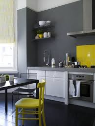 Color Under Your Feet: A Gallery of Painted Kitchen Floors   Grey yellow,  Kitchens and Gray