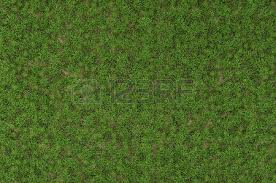 wild grass texture. High Resolution Of Wild Grass Texture - 3D Rendering Stock Photo, Picture And Royalty Free Image. Image 36103161.