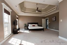 Tray Ceiling Tray Ceiling Paint Ideas Bedroom And Living Room Image Collections