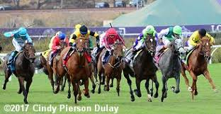 2017 Breeders Cup Charts 2017 Breeders Cup Juvenile Fillies Turf Results