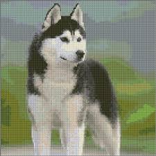 Siberian Husky Dog Animals Cross Stitch Dogs Siberian
