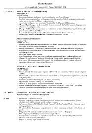 Project Superintendent Resume Samples Velvet Jobs