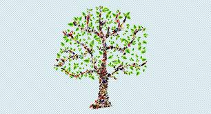 Beginners Tips For Creating An Online Family Tree Geneology