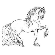 Tekening Paardenhoofd Kleurplaat Paardrijden Kleurplaat Kleurplaten