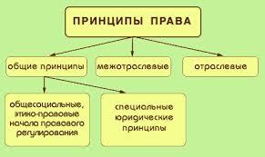ПРАВОВЕДЕНИЕ Тема  Принципы права