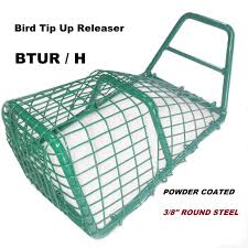 Bird Cage Trap Design Swcage Com There Is A Difference In Quality And Design