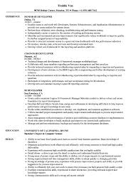 Bi Developer Resume BI Developer Resume Samples Velvet Jobs 1