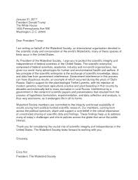 Gallery Of Letter To The President Template