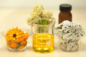 free images plant flower food herb produce beaker meadowsweet yarrow pot marigold calendula officinalis filipendula ulmaria