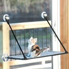 cat window sill perch large size of cat tree window ledge seat cat perch best cat cat window sill perch