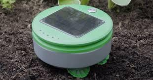 meet tertill the solar powered weeding robot for your garden