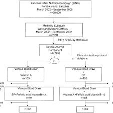 Study Flow Chart Hb Hemoglobin Sp Sulfadoxine