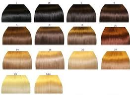 Hair Color Chart 2 Qlassy Hair Extensions