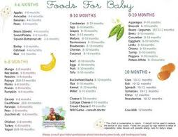 Solid Food Chart For Babies Aged 4 Months Through 12 Months