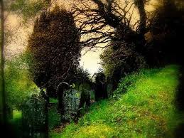 best cemeteries images cemetery art graveyards  beautiful cemeteries beautiful cemetery photos