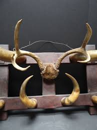 Western Coat Rack Western Steer Horn Hat Coat Rack SOLD A100 Early California Antiques 81